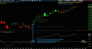 Most Accurate Forex VSD Trading Signal System