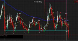 50 Pips a Day Forex Scalping Strategy